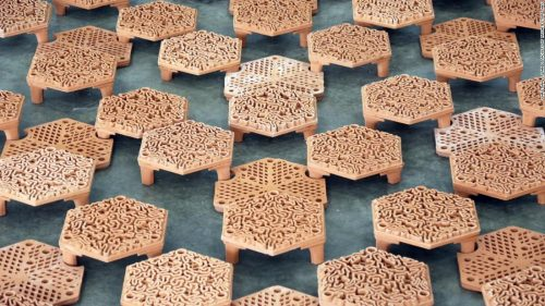 How 3D printing could help save Hong Kong's coral
